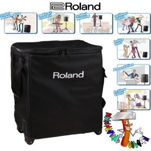 Roland BA-330 in tour case 2
