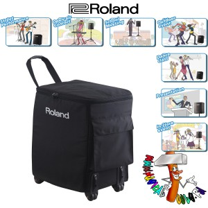 Roland BA-330 in tour case