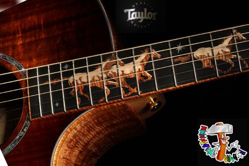 Order Taylor Guitars 2
