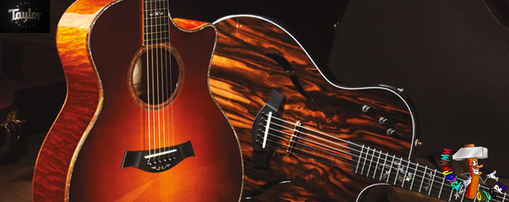 Order Taylor Guitars