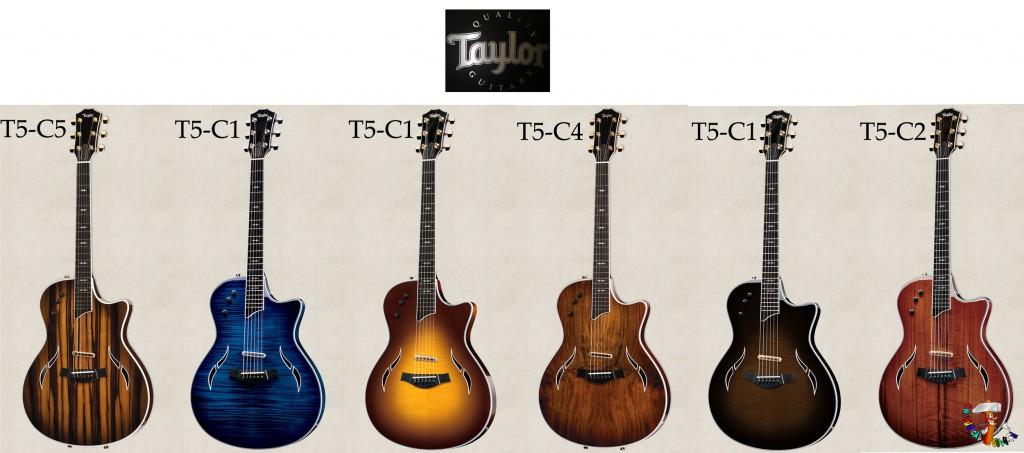 Taylor T5-Custom